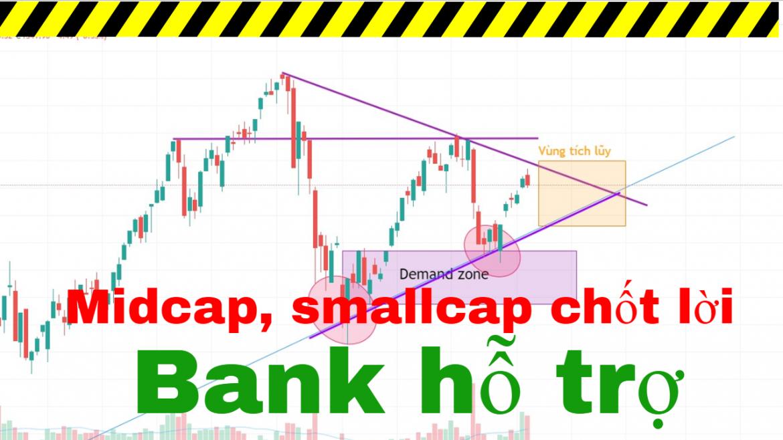 Nhận định thị trường chứng khoán ngày 07-09. Ngân hàng lên tiếng, midcap và smallcap giảm mạnh